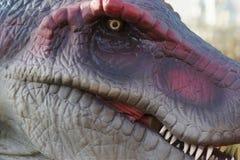 Aegyptiacus de Spinosaurus - de Spinosaurus Foto de archivo libre de regalías