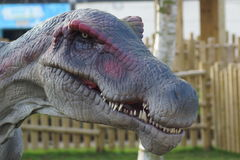Aegyptiacus de Spinosaurus - de Spinosaurus Imagen de archivo libre de regalías