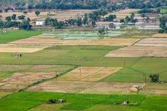 Aeiral-Ansicht der indischen Landschaft mit Reispaddys, Tamil Nadu, Stockfotografie