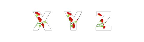 Aen-z för blommastilsortsalfabetet som göras av nejlika, blommar royaltyfri foto