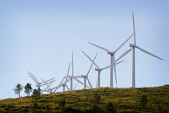aeolican energi Arkivbild