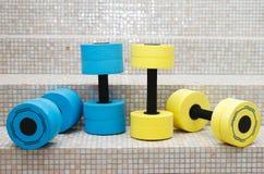 Aeróbicos de agua de cuatro pesas de gimnasia Foto de archivo libre de regalías