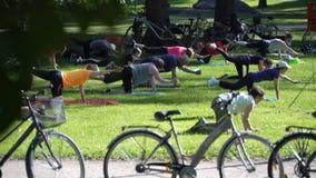 Aeróbicos totales en un parque público de la ciudad almacen de video