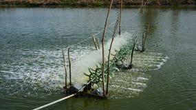 Aerador del oxígeno del agua dulce Foto de archivo