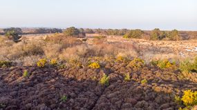 An aerail view of the Studland Nature Reserve with sand dune and peat bog  under a majestic hazy blue sky.  stock photo
