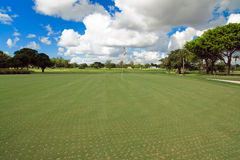 Aerated Golf Course Putting Green. Landscape view of an aerated golf course putting green royalty free stock photo
