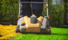 Aeration of the lawn in the garden. Yellow aerator on green grass. Close up royalty free stock images