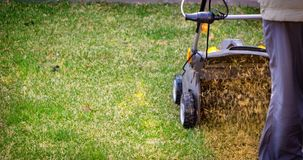 Aeration of the lawn in the garden. Yellow aerator on green grass. Close up royalty free stock photo