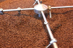 Aeration roasted coffee beans. Blade circular device that performs the rotation aeration roasted coffee beans Stock Photos