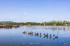The aeration turbines in the shrimp farm for fresh water Royalty Free Stock Image