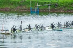 Aerator Water Turbine Wheel Fill Oxygen into Shrimp Farm Pond.  stock photos