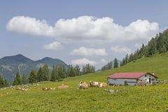 Aerchkogel-Hütte Lizenzfreie Stockfotos