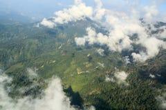 Aereal-Ansicht eines Dschungels Lizenzfreie Stockbilder