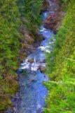 Aereal widok Koksilah rzeka w Vancouver wyspie, Kanada obraz royalty free