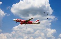 Aerei di atterraggio Immagini Stock Libere da Diritti