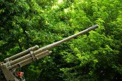 Aerei di seconda guerra mondiale in fogliame verde Fotografia Stock