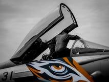 Aereo da caccia di Eurofighter Typhoon con la livrea della tigre fotografie stock libere da diritti