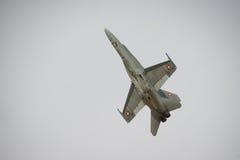 Aereo da caccia svizzero del calabrone dell'aeronautica F18 Fotografia Stock Libera da Diritti