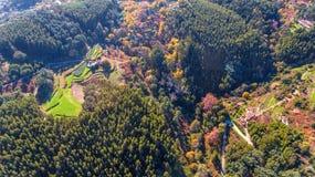 aereo Foreste ed il paesaggio della zona ecologica Monchique Dal cielo in fuchi Immagini Stock Libere da Diritti