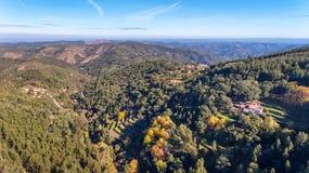 aereo Foreste ed il paesaggio della zona ecologica Monchique Dal cielo in fuco Fotografia Stock