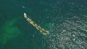 aereo Turisti intrattenuti a canottaggio ed al kayak nella baia Ponta de Piedade video d archivio