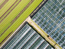 Aerial agricultural view of lettuce production field and greenho Royalty Free Stock Photography