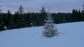 Aerial - Around snow-covered and light up Christmas tree in the forest stock video footage
