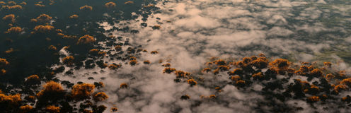 Aerial of autumn forest partly covered by morning clouds. Stock Image