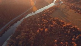 Aerial: Autumn nature. Country landscape at sunset. Country landscape at sunset. Smooth field golden crown of the trees, a narrow river bed, rural road. The stock footage
