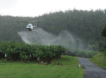 Aerial banana spraying Tully, Queensland, Australia. Helicopter spraying of bananas near Tully, Far North Queensland, Australia, small intensive farming in the Stock Photo