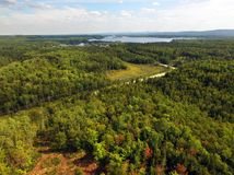 Aerial of beautiful forest with lake Stock Image