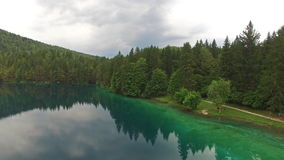 Aerial: Beautiful Green Forest Lake In Belopeska, Italy stock video
