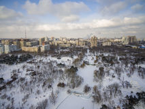 Aerial camera captures snow covered pine trees in Victory Park Odessa. The Odessa city skyline is in the background Royalty Free Stock Image