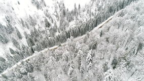 AERIAL: Car driving along the forest road in winter. Winter Carpatians nature, aerial view realtime snowfall, UHD 4K stock footage