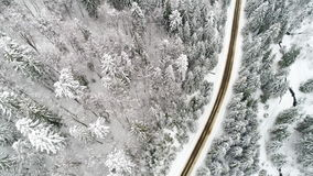 AERIAL: Car driving along the forest road in winter stock video footage