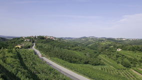 AERIAL: Car passing on the road between the wine country stock video footage