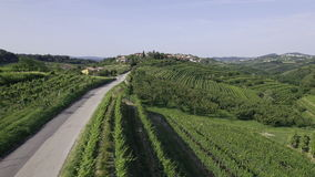 AERIAL: Car road between the wine country stock video footage