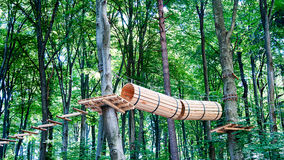 Aerial challenge course in a forest Royalty Free Stock Images