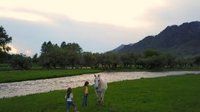 Aerial. children on a meadow at the foot of the mountains play with the wild horse. two little girls sisters in the. Children on a meadow at the foot of the stock video footage