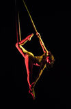 Aerial contortion. Beautiful girl artist of circus Stock Images