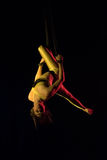 Aerial contortion Royalty Free Stock Photos