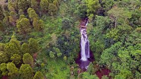 Aerial crane style shot with drone above beautiful Bali paradise waterfall and jungle rainforest in Asia travel. Destination and Summer vacations trip concept stock footage