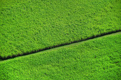 Aerial crops Royalty Free Stock Photo