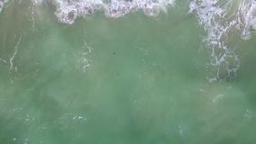 Aerial drone above the beach. Flying a drone above the shore Key Biscayne FLorida stock video