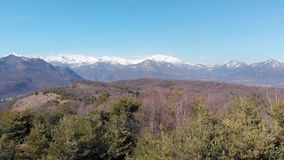 Aerial: drone ascending from forest reveals aerial view of snow capped mountains valley and clear blue sky. Turin, Italy stock footage