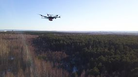 Aerial for the drone camera flying in the sky above deciduous and coniferous forest on blue sky background. Clip stock video