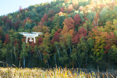Aerial Drone flying over forest in autumn Royalty Free Stock Image