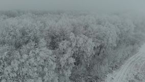 Aerial drone footage frozen trees in ice in the winter fog 4k stock video footage