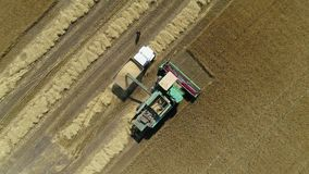 Aerial drone footage. Harvester spills grain into a truck. Top view stock video footage