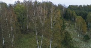 Aerial drone footage view: flight over autumn mountain village with forests, fields and river in sunrise soft light. Carpathian Mo